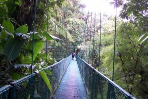Tropical Ecotourism Adventures